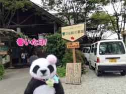 平田観光農園に到着